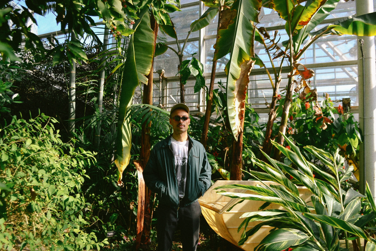 DJ St. Thomas Plants
