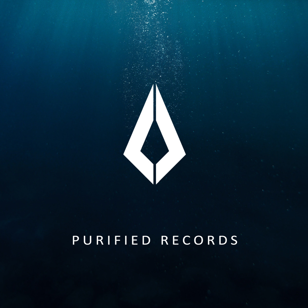 Nora En Pure Purified Records