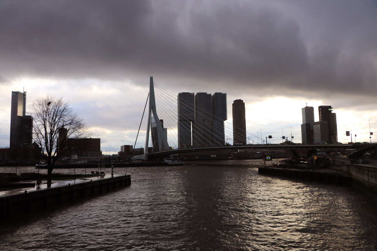Erasmus Bridge 1