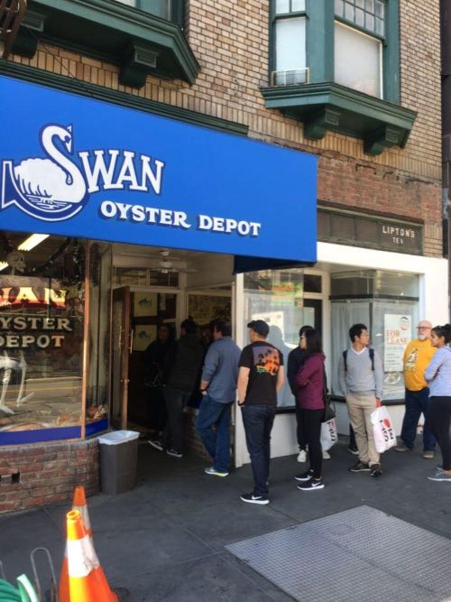 Swans San Francisco