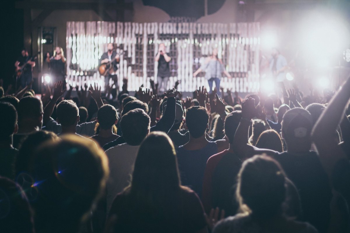 Audience Concert Crowd