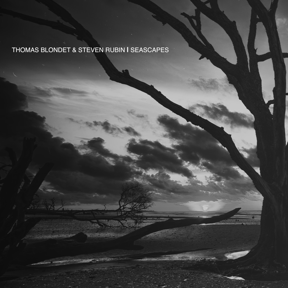 Thomas Blondet & Steven Rubin - Seascapes [Rhythm & Culture Music]