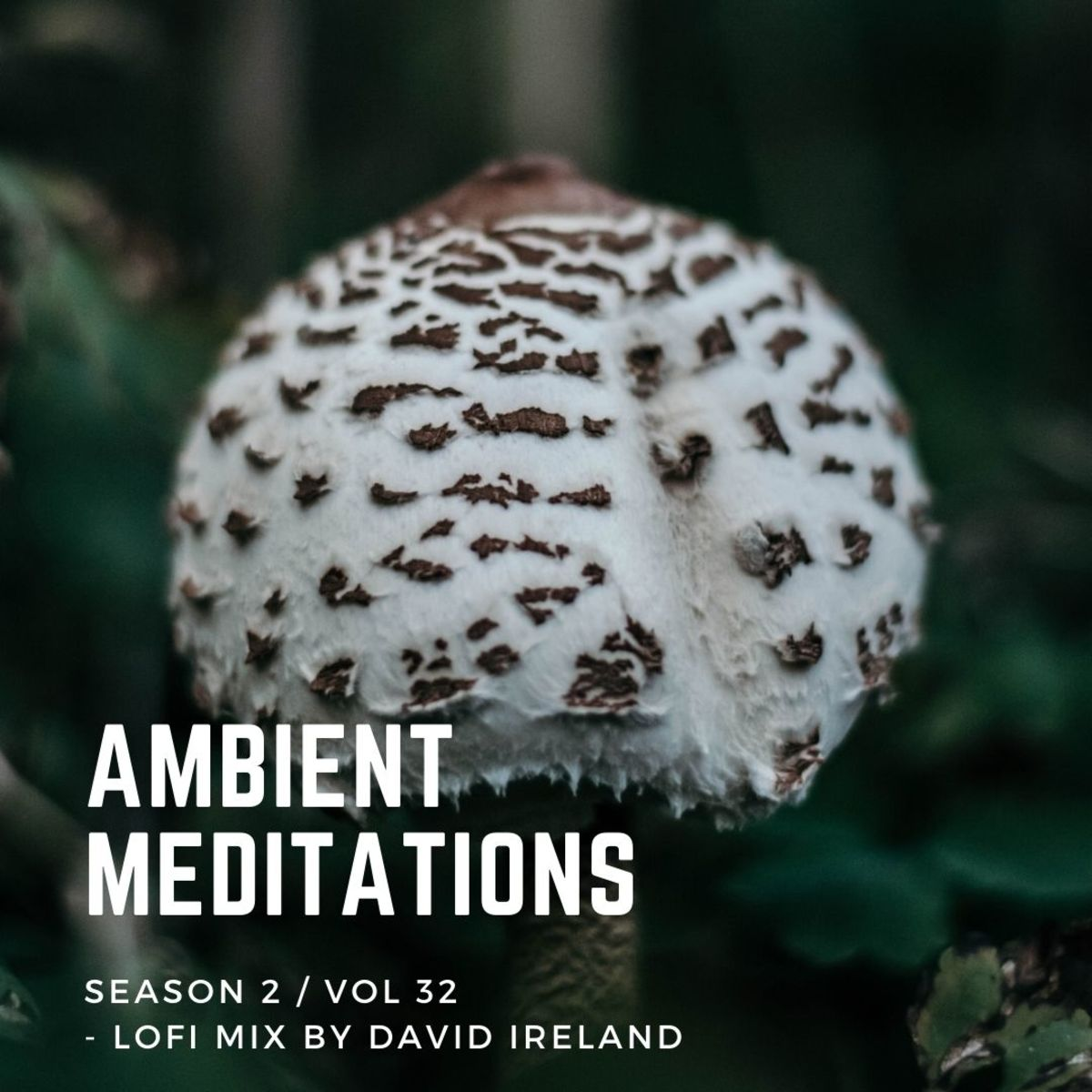 Ambient Meditations Mix LoFi Mix