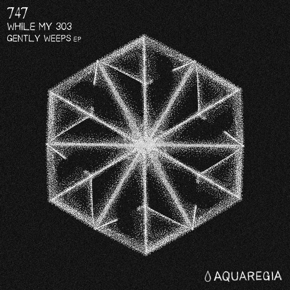 747 -While My 303 Gently Weeps EP[Aquaregia Records]