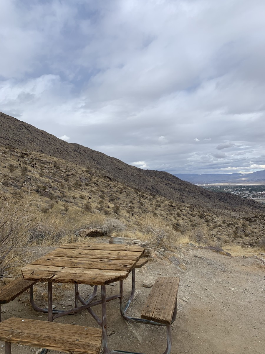 End of Palm Springs Museum Trail