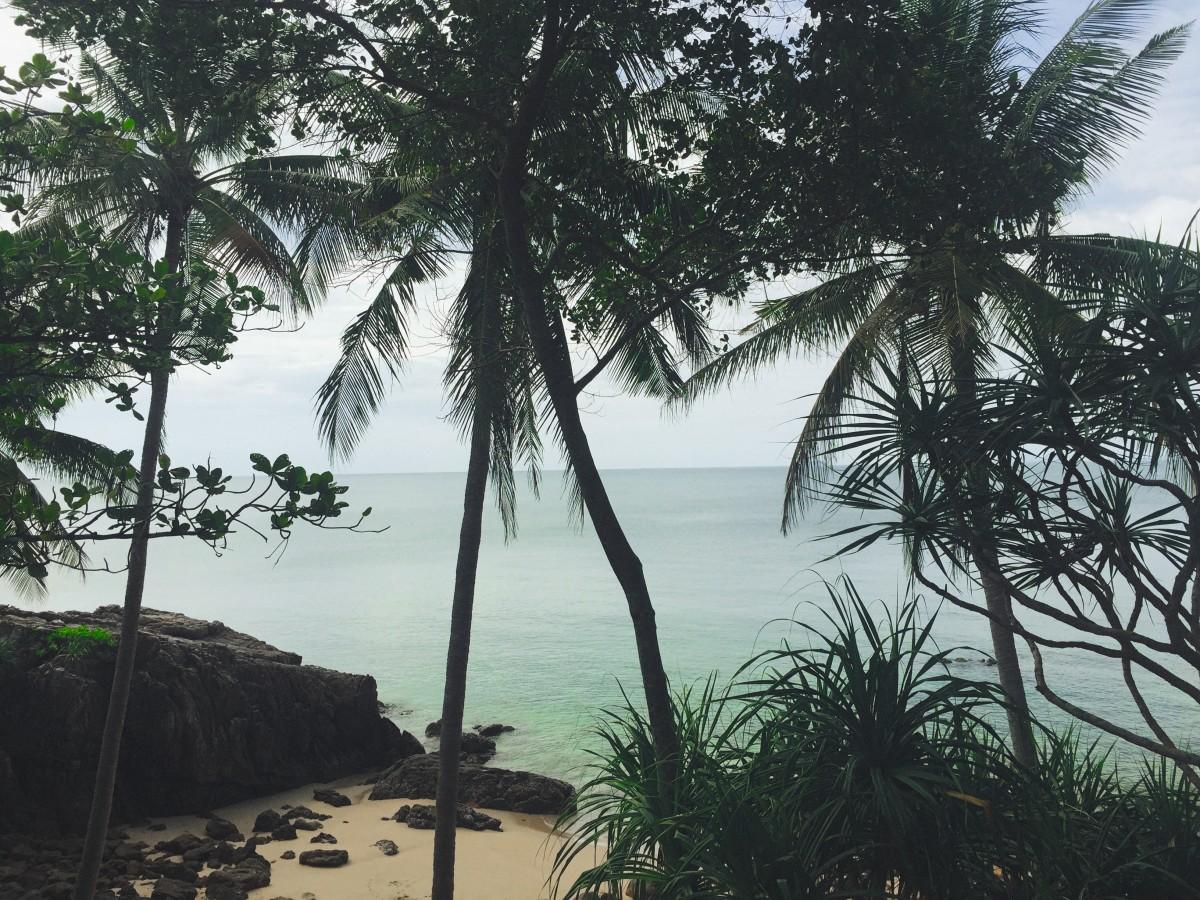 Ko Lanta, Thailand Ocean, Beach Trees