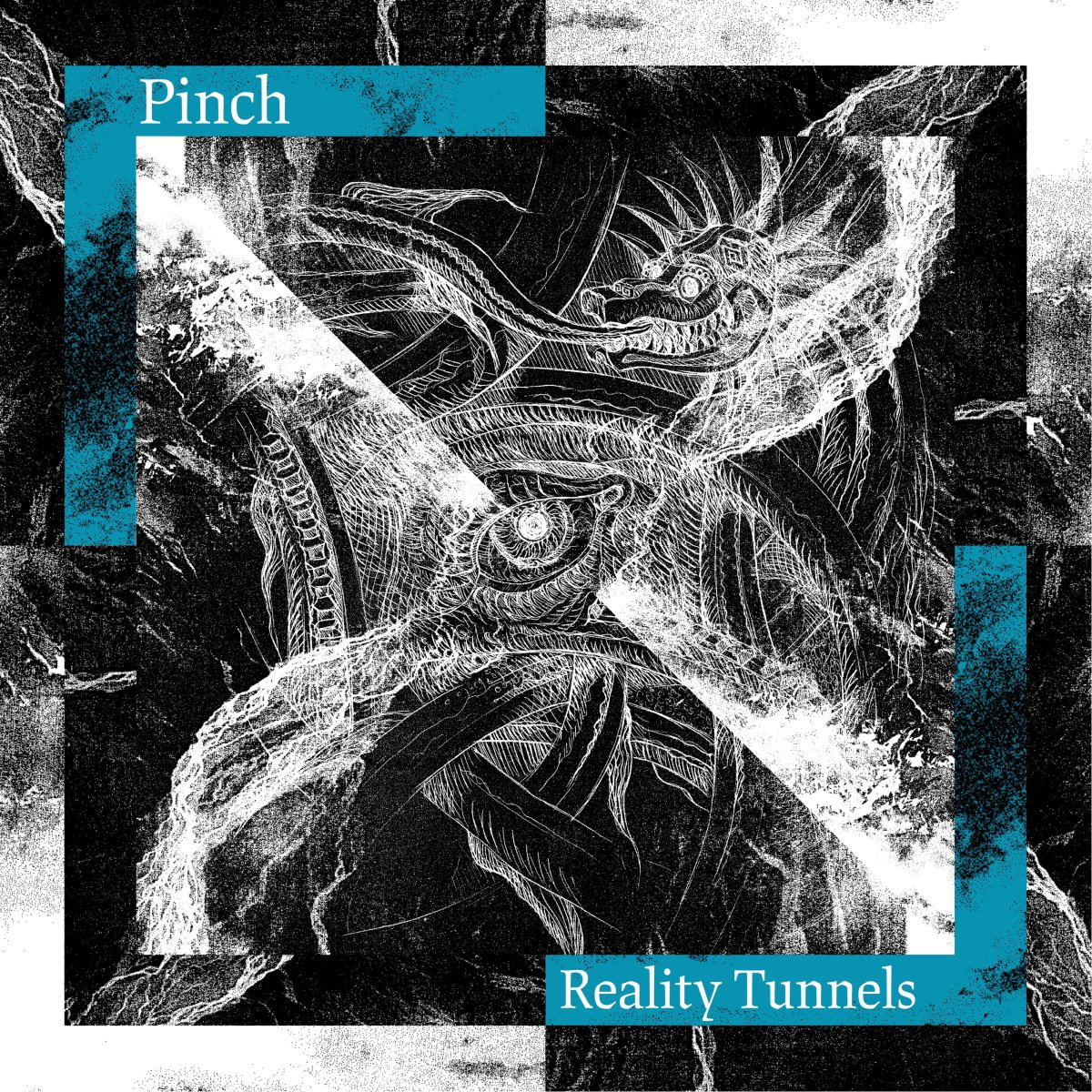 Pinch Reality Tunnels
