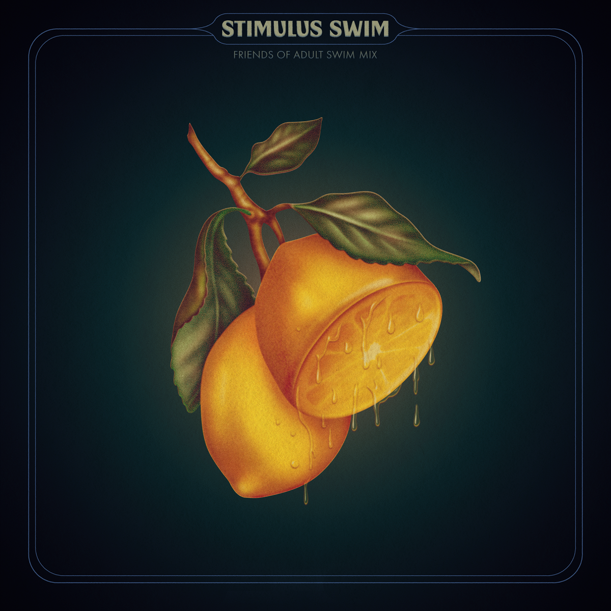 Adult Swim Stimulus Swim