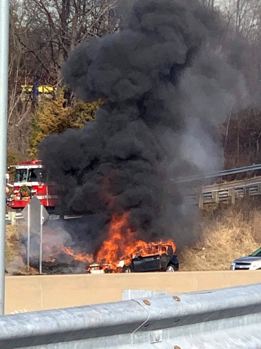 Feral Burning Car
