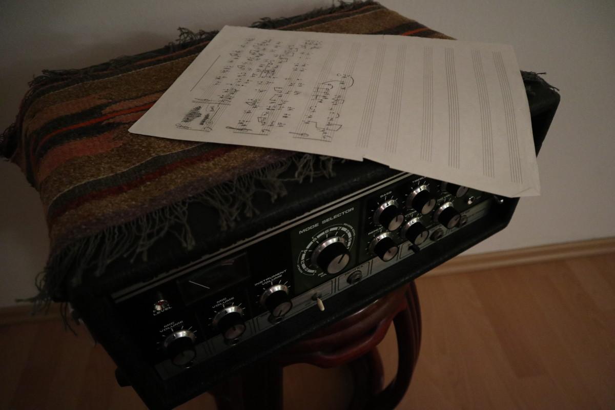 Roland Tape Echo