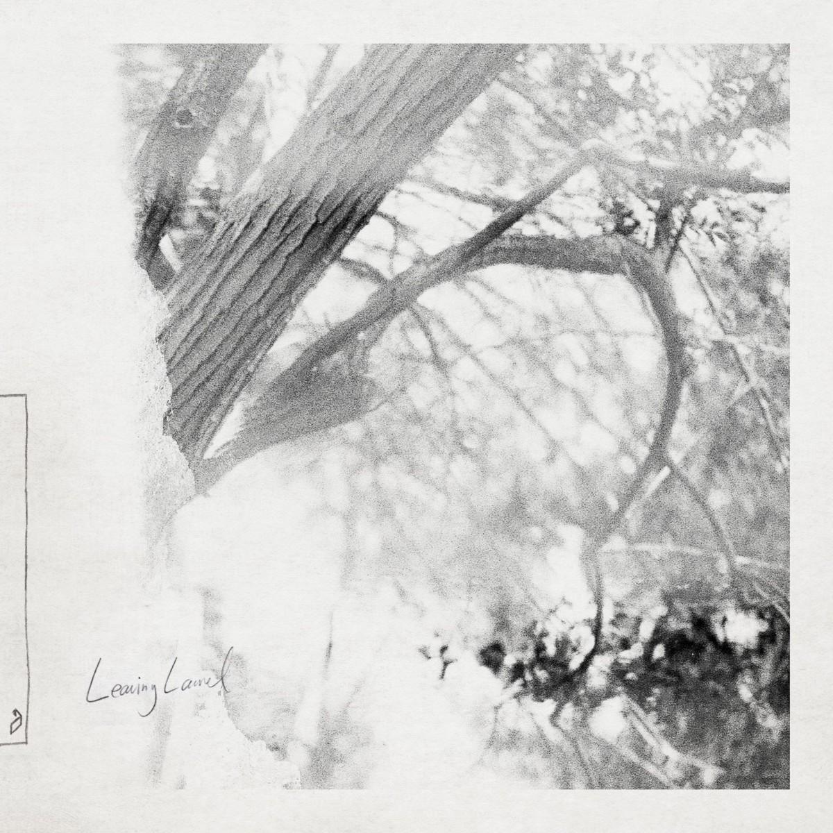 Leaving Laurel Album Cover Photo